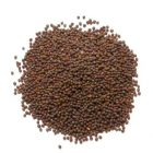 Mustard Seeds - Whole 50g (Khardal)